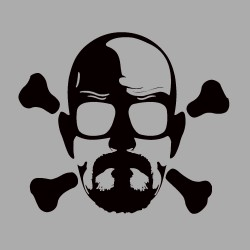 Breaking Bad Skull Design